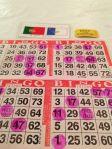 Bingo7jpg