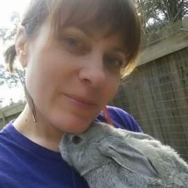 emily bunny